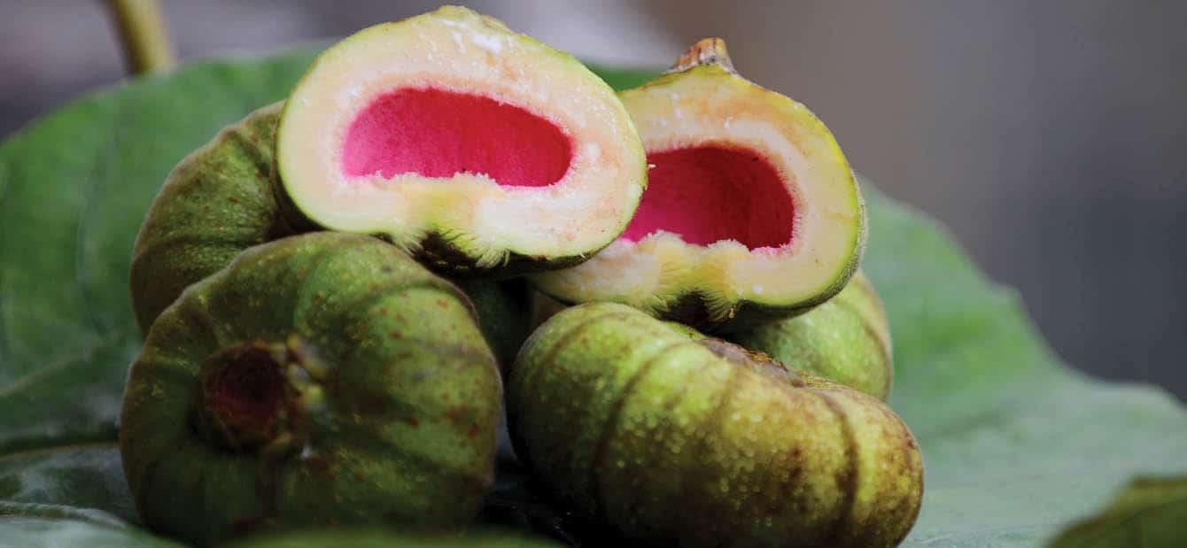Vả trộn Huế món ăn gây thương nhớ cho người xa quê - Cách làm món khai vị Vả trộn ngon đúng điệu. 1